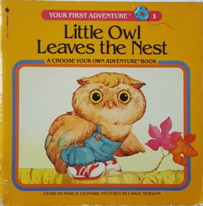 "Cover of the book ""Your First Adventure: Little Owl Leaves the Nest"""